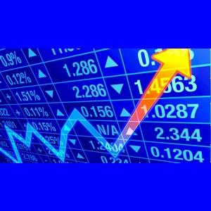 Comprendre la bourse et y investir